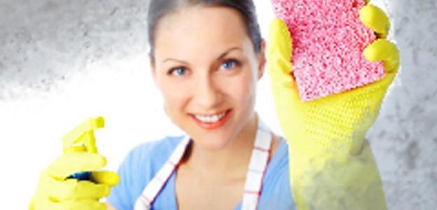 femme de ménage à toulouse