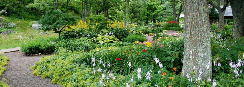 garden-56719_1920